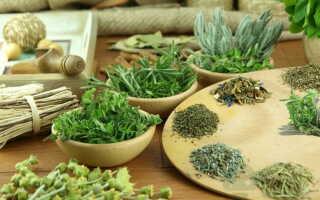 Природные рецепты на травах от грибка