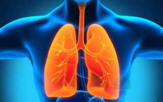 Специфика образования грибковой пневмонии у человека